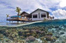 Coraux atoll polynésien de FAKARAVA-T.VIGNAUD-Photothèque CNRS